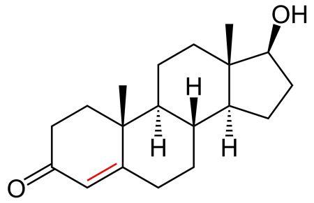 Dht Hormoni