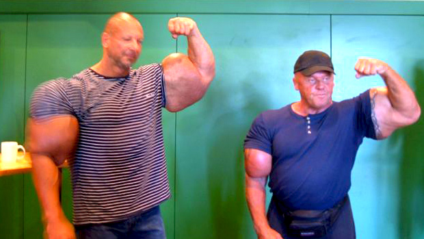 synthol in brate